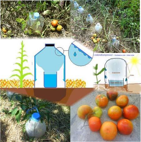 Basurillas blog archive goteo solar agua de mar y for Como solucionar problemas de condensacion en una vivienda