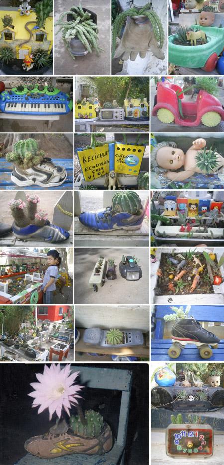Macetas ecológicas - Ecologia y reciclaje en Sonora - Mario A. Tapia