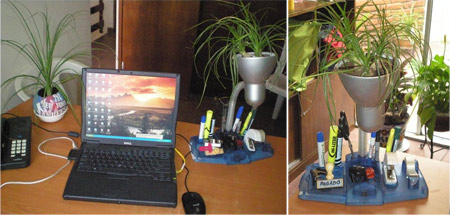 Jardin ecológico en la oficina - Ecologia y Reciclaje en Sonora