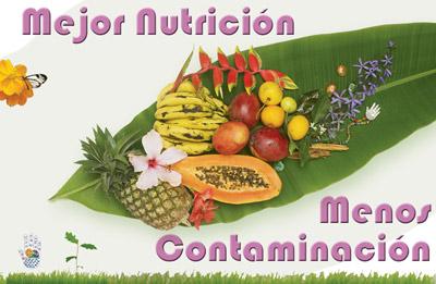 Cartel Nutrición - Pura Vida