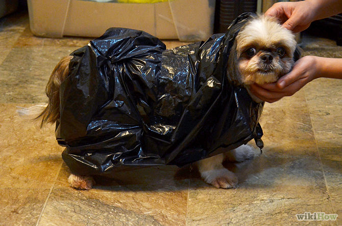 Impermeable para perros con bolsas - wikihow.com