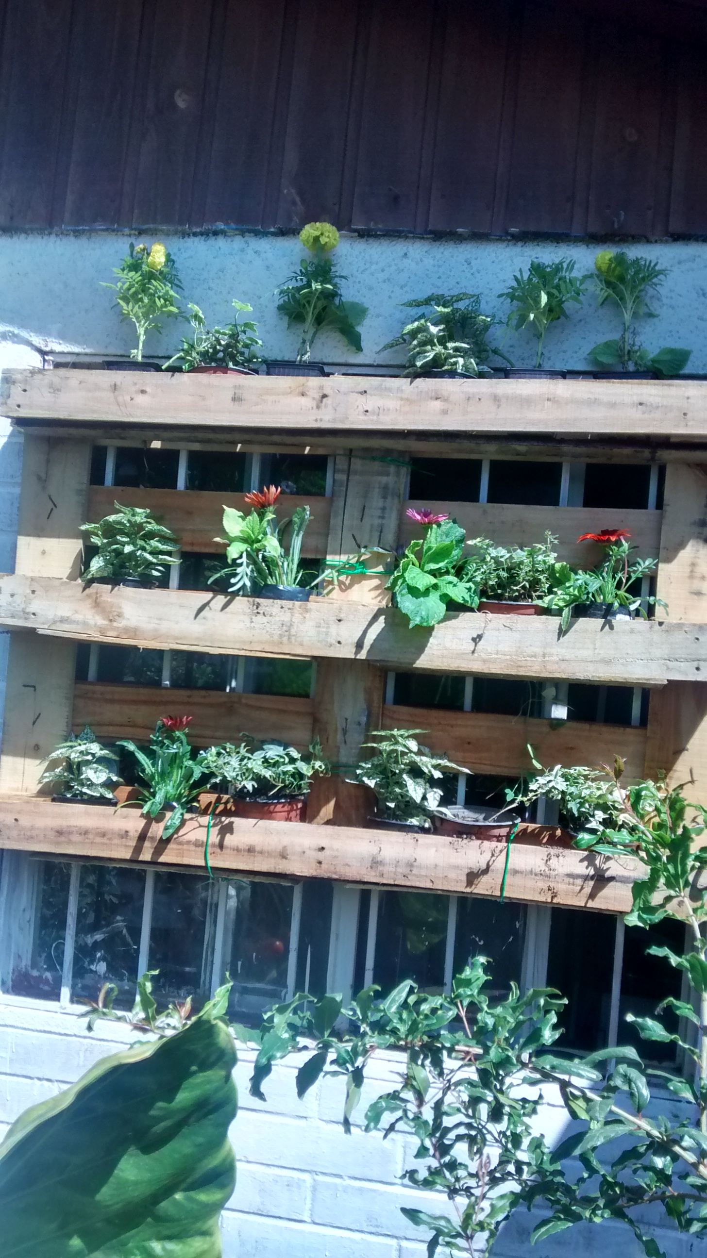 Jardinera palet - Basurillas - Shanna