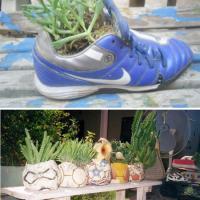 El jardín del reutilizaje - Mario Alberto Tapia