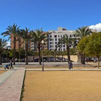 Mercado de Trueque en Alicante.